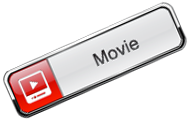 Web Movie Player