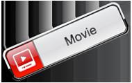 Web Movie Player